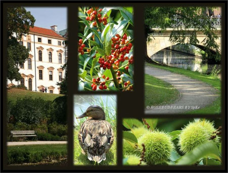 Schlosspark Celle - das Celler Schloss mit einem Rest Burgwall - Brücke über den Wassergraben