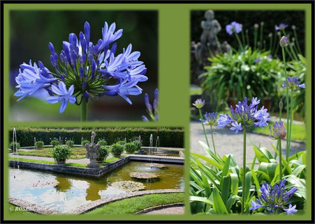 Großer Garten Hannover Herrenhausen Inselgarten