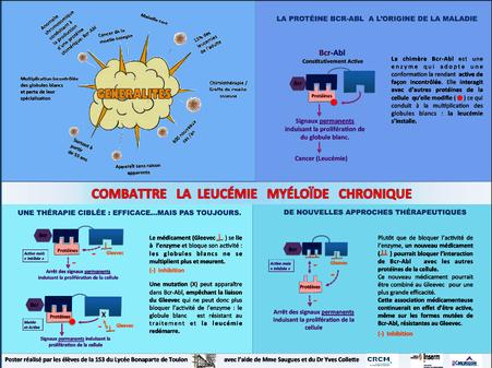 lycée bonaparte toulon marjorie saugues docteur yves colette leucemie myeloide chronique inserm crcm canceropole paca lmc france