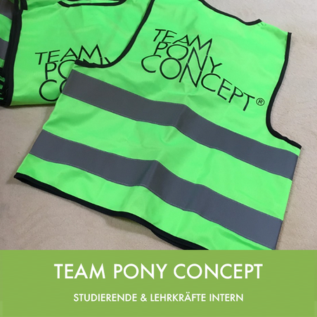 Team Pony Concept - Shop Intern