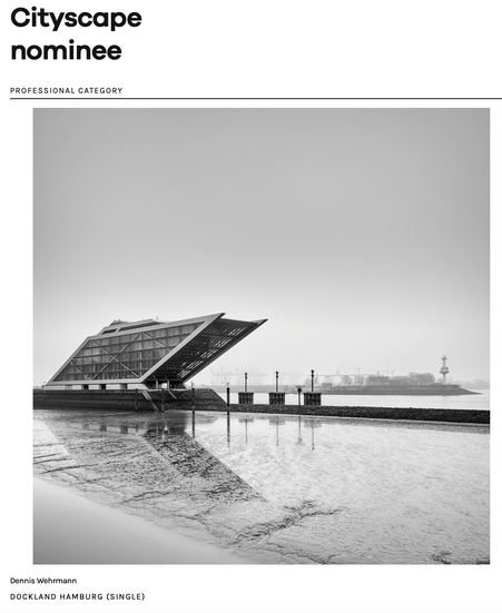 Dennis Wehrmann fine art photography awards 2021 - professional category winners - nominee