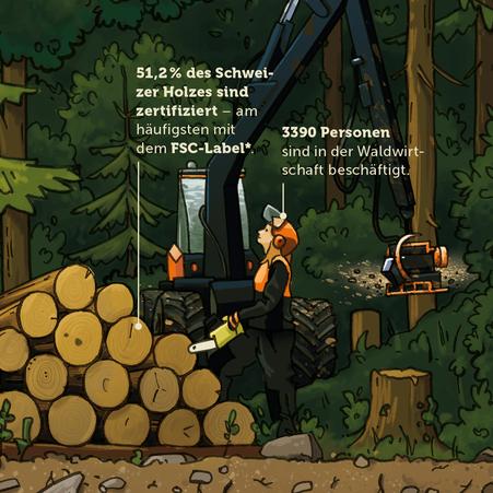 Ausschnitt der Visualisierung zum Thema Waldwirtschaft © Michael Stünzi