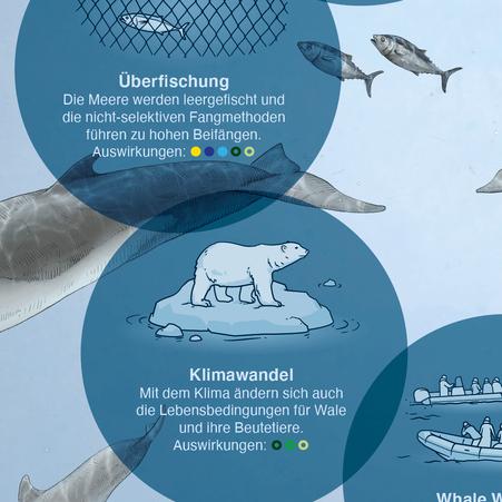 Ausschnitt der Infografik - Detail Klimawandel und Überfischung © Michael Stünzi