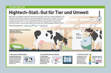 Infografik Pflanzen und Tiere, digitaler Stall © Michael Stünzi