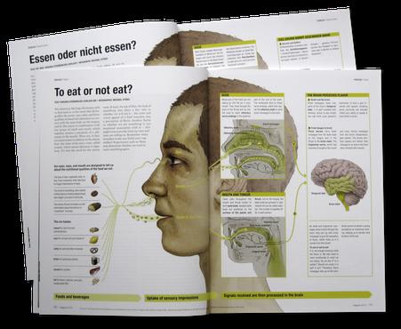 Doppelseite der Infografik © Michael Stünzi