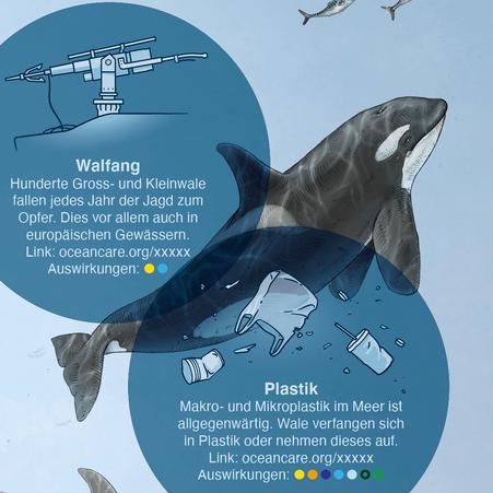Ausschnitt der Infografik - Detail Walfang und Plastik © Michael Stünzi