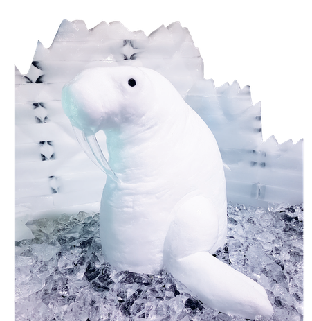 White snowy landscapes simply warm your heart – not only when they are a part of nature. Snow decorations have a way of lending Christmas celebrations, parties or product presentations a special aura and captivating splendor.