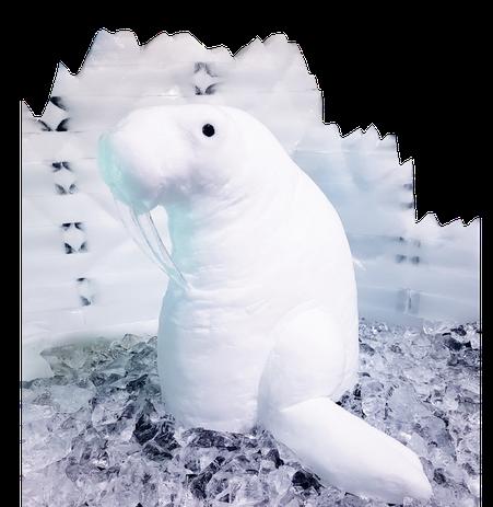 Weiße Schneelandschaften lassen einfach das Herz aufgehen – nicht nur in der Natur. Schneedekorationen verleihen auch Weihnachtsfeiern, Partys oder Produkt-präsentationen besonderes Flair und faszinierenden Glanz.