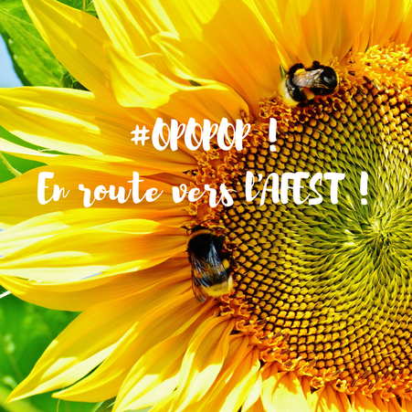 Crédit Pixabay - en route vers l'AFEST
