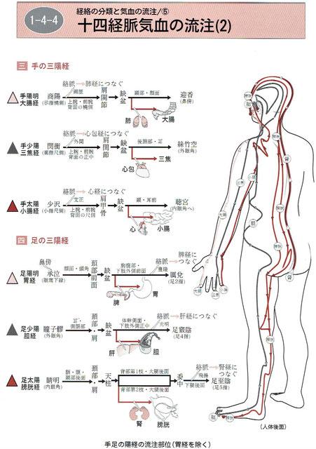 「経絡マップ」より
