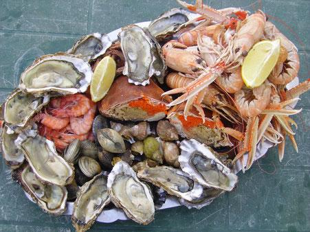 Austern Bretagne Muscheln Bretagne Ernährung Bretagne