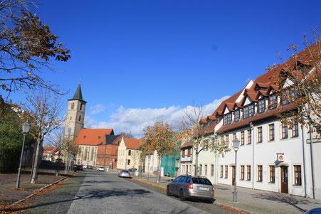Tierärztin Peters - Ihre Kleintierpraxis in Bernburg/Saale