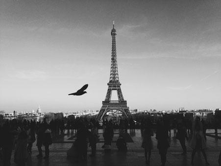 Eiffelturm schwarz-weiß