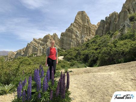 Clay cliffs Nieuw Zeeland