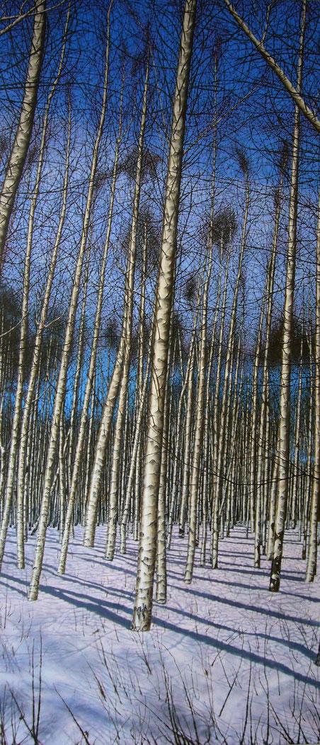 Waldansicht     2,30 x 1,00 m     Acryl auf Leinwand  /  acrylic on canvas
