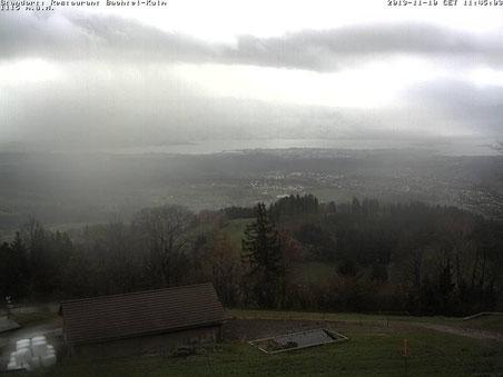 Webcam Bachtel Kulm, 1115 m.ü.M., 10. November 2013. 11.45 Uhr, kurz vor dem Wintereinbruch