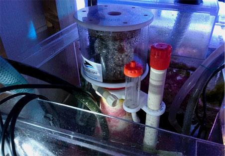 オーバーフロー水槽 配管計画