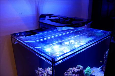 フルスペクトル LED ライト レブロン コーラルボックス moon led