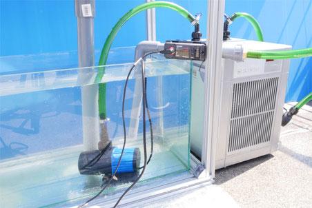 DEP-4000 HSABO 水中ポンプ 水陸両用ポンプ オーバーフロー水槽 DCポンプ