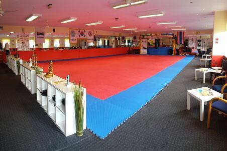 Kampfsportfläche 1
