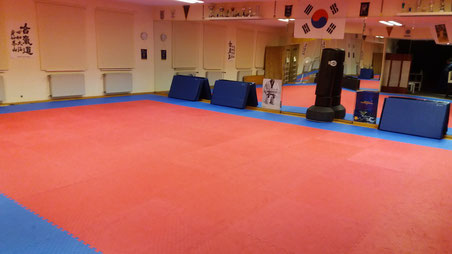 Kampfsportfläche 2