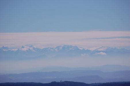 traumhaftes Alpenpanorama