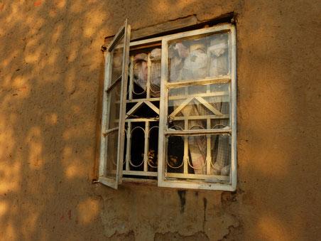 mein Fenster