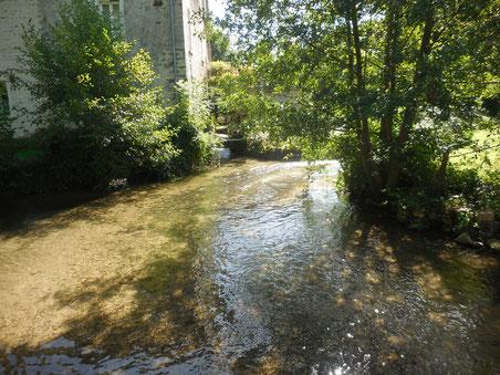 """Petit cours d'eau très propre et rafraichissant """" L'Ecole """""""