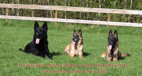 Axl, Hanna und Jubel