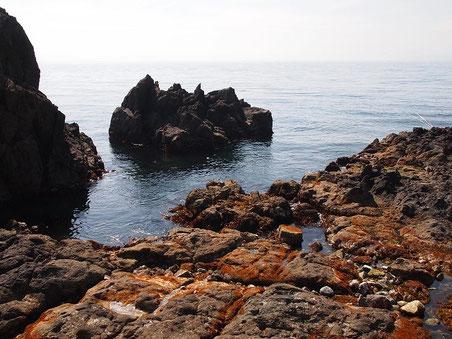 目の前の磯 ヤドカリ捕りから釣りまでOK 2012年5月