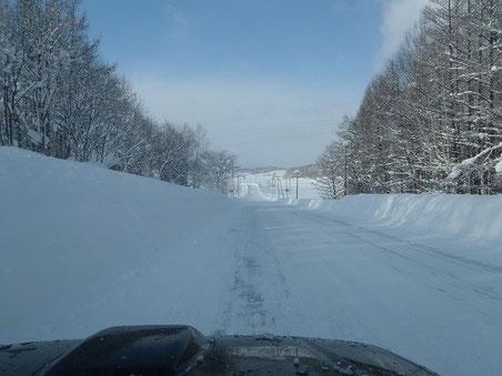 真っ白な雪の中を走るのは気持ちイイ