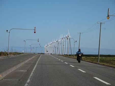 オトンルイ風力発電所 風車群