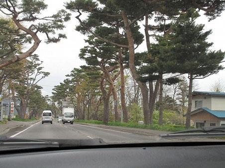 国道5号線(大沼国道) 七飯町鳴川