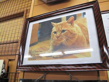 店には写真が掲げられていました