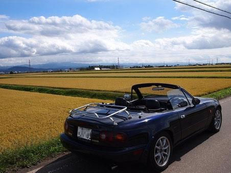 pm12:24 新十津川の田園風景