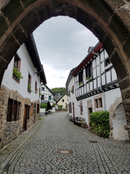 Burgbering der Burgruine Kronenburg