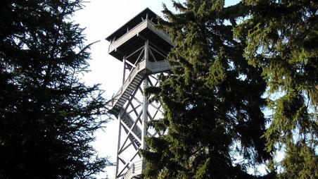 Der Oberpfalzturm auf der 946 m hohen Platte, die höchsten Erhebung im Naturpark Steinwald © Copyright by Olaf Timm