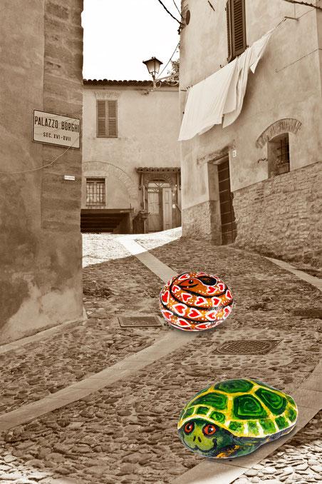 Foto & Composizione di Fabio Leoni fotografo Modigliana