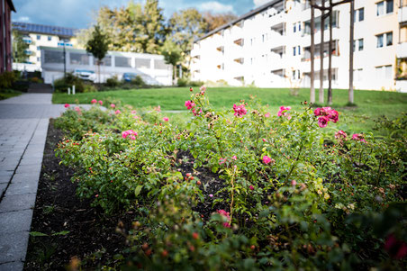 Wohnungsverein Hagen