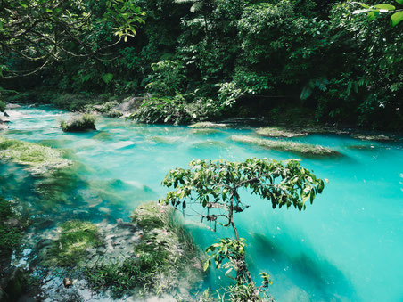 Türkisblauer Fluss in Bijagua, Costa Rica.