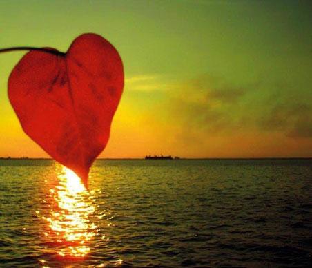 Coeur et mer / Partage et témoignage séances hypnose individuelles