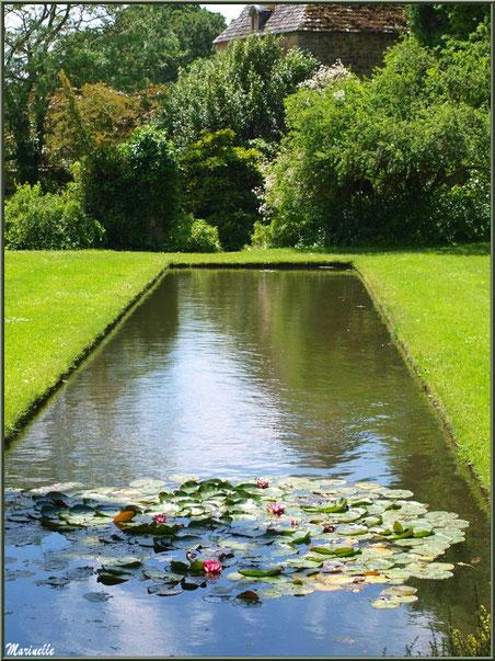 Le Canal : le bassin et ses nénuphars - Les Jardins du Kerdalo à Trédarzec, Côtes d'Armor (22)