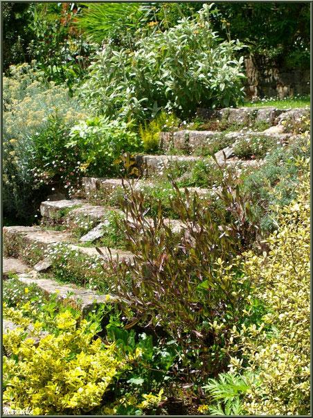 Un escalier aux Terrasses - Les Jardins du Kerdalo à Trédarzec, Côtes d'Armor (22)