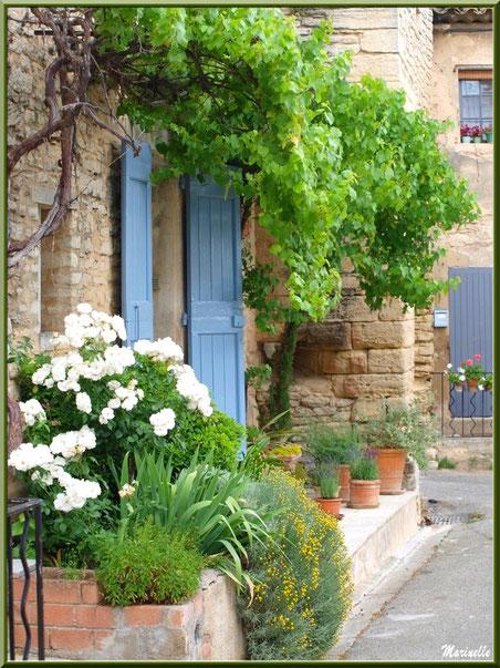 Ruelle et façades fleuries - Goult, Lubéron - Vaucluse (84)