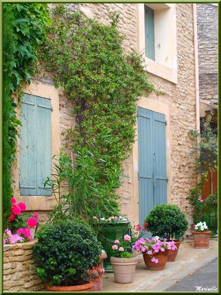 Ruelle et façade fleurie - Goult, Lubéron - Vaucluse (84)