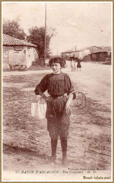 Gujan-Mestras autrefois : Parqueuse à l'entrée de Gujan, Bassin d'Arcachon (carte postale, collection privée)