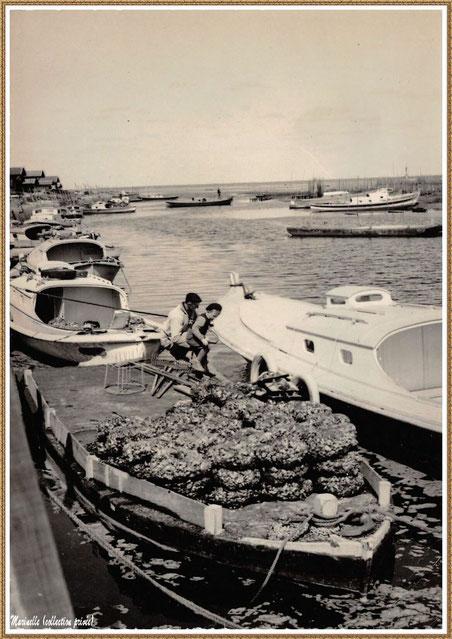 Gujan-Mestras autrefois : pinasses, chaland avec panetières d'huîtres dans la darse principale du Port de Larros, Bassin d'Arcachon (carte postale, collection privée)