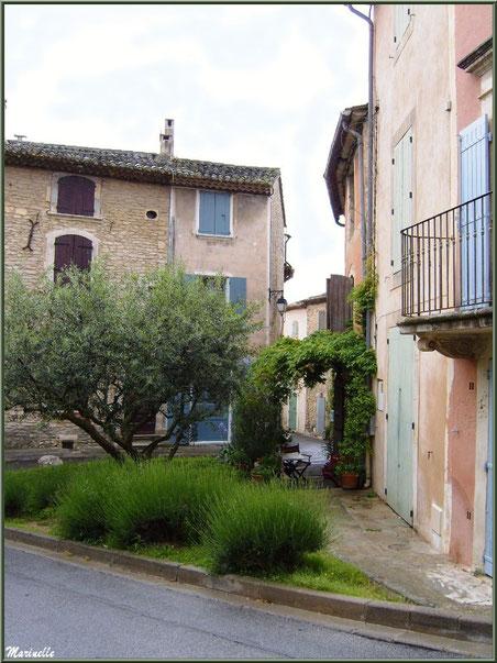 Jardinet et maisons à côté de l'ancien Bureau de Poste (juste derrière l'olivier) - Goult, Lubéron - Vaucluse (84)