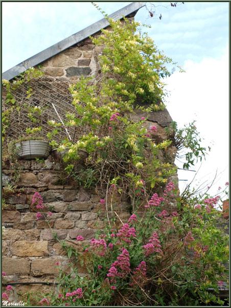 Habitation au mur fleuri jouxtant un lavoir en bordure du Trieux, Pontrieux, Côte d'Armor (22)