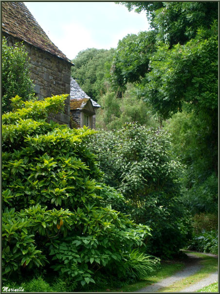Le Manoir et un des sentiers menant à la Vallée du Bas - Les Jardins du Kerdalo à Trédarzec, Côtes d'Armor (22)